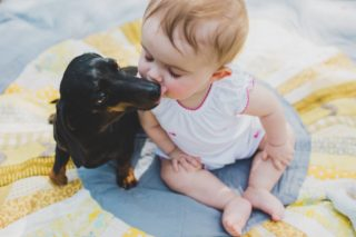 toddler, dog, kiss