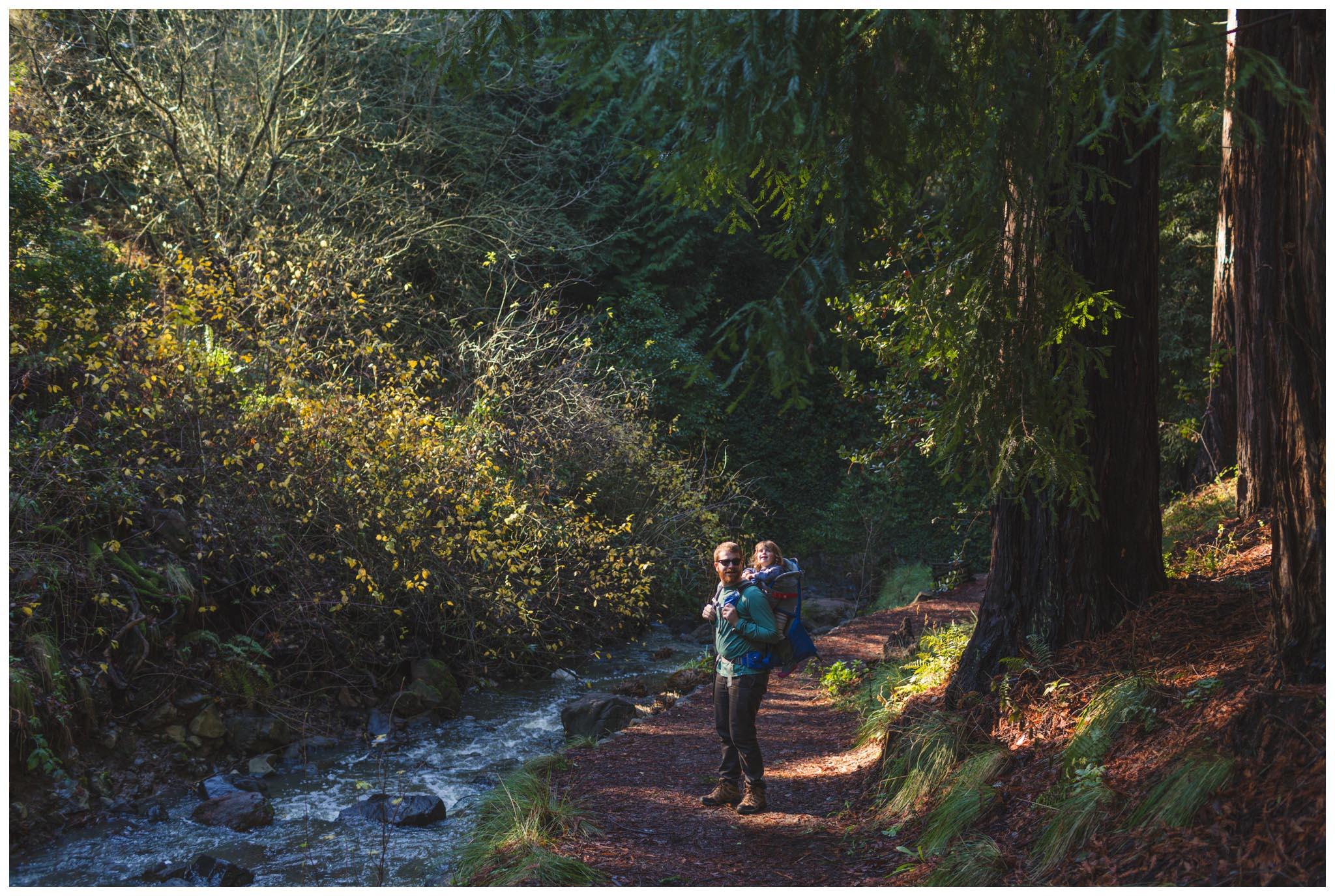Tilden Regional Park, Regional Parks Botanic Garden