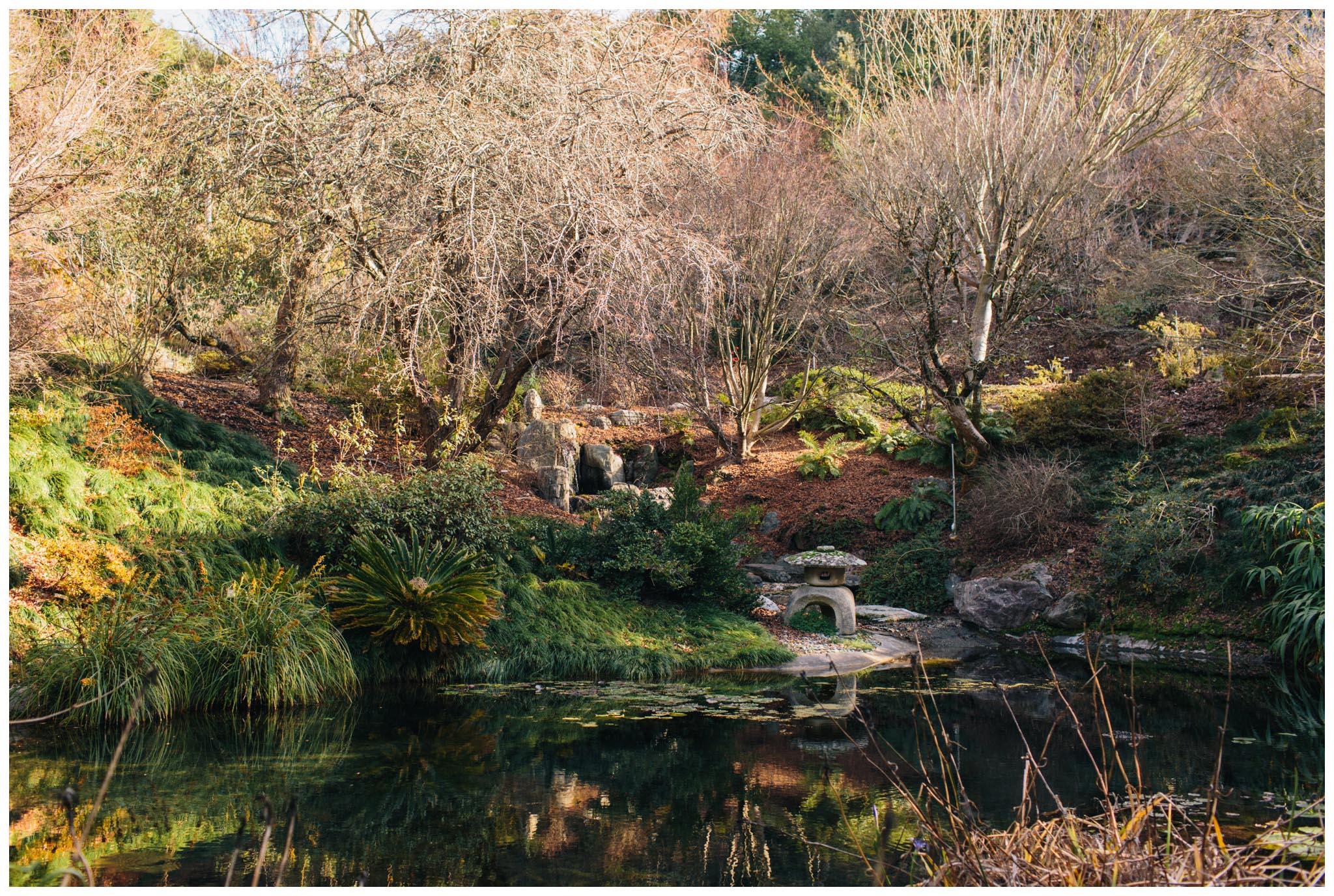 University of California Botanical Garden, wedding
