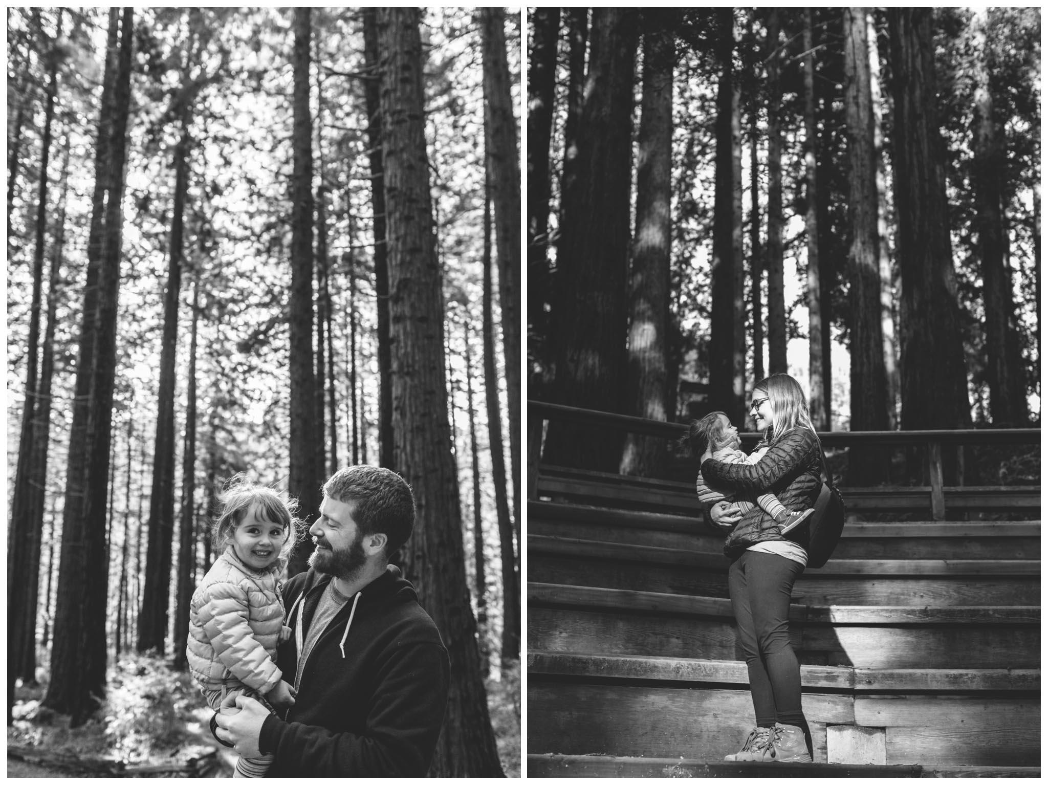 University of California Botanical Garden, wedding, Redwood Grove