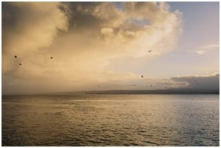 Monterey Bay, wedding, photography
