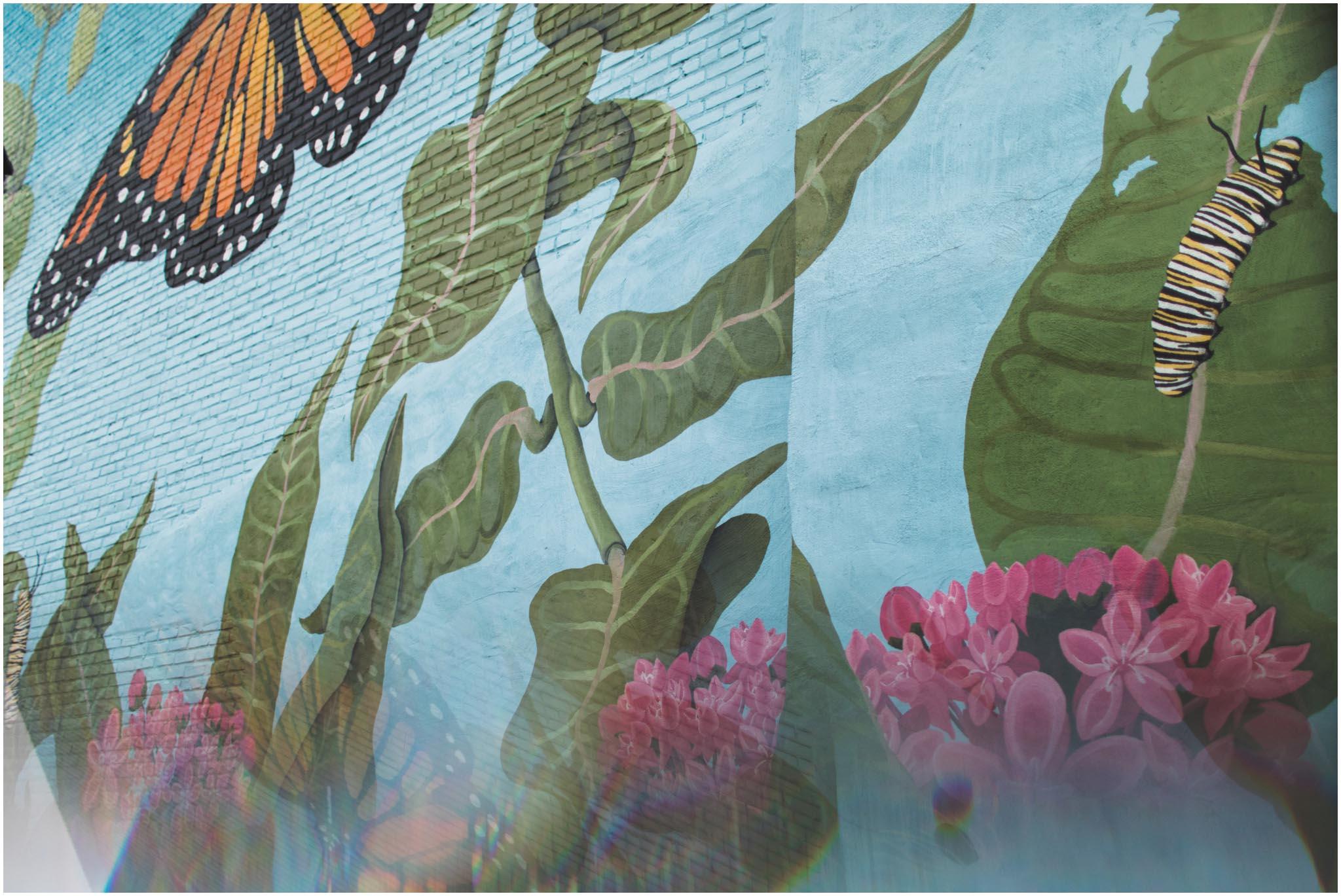 Insectarium, Philadelphia, engagement
