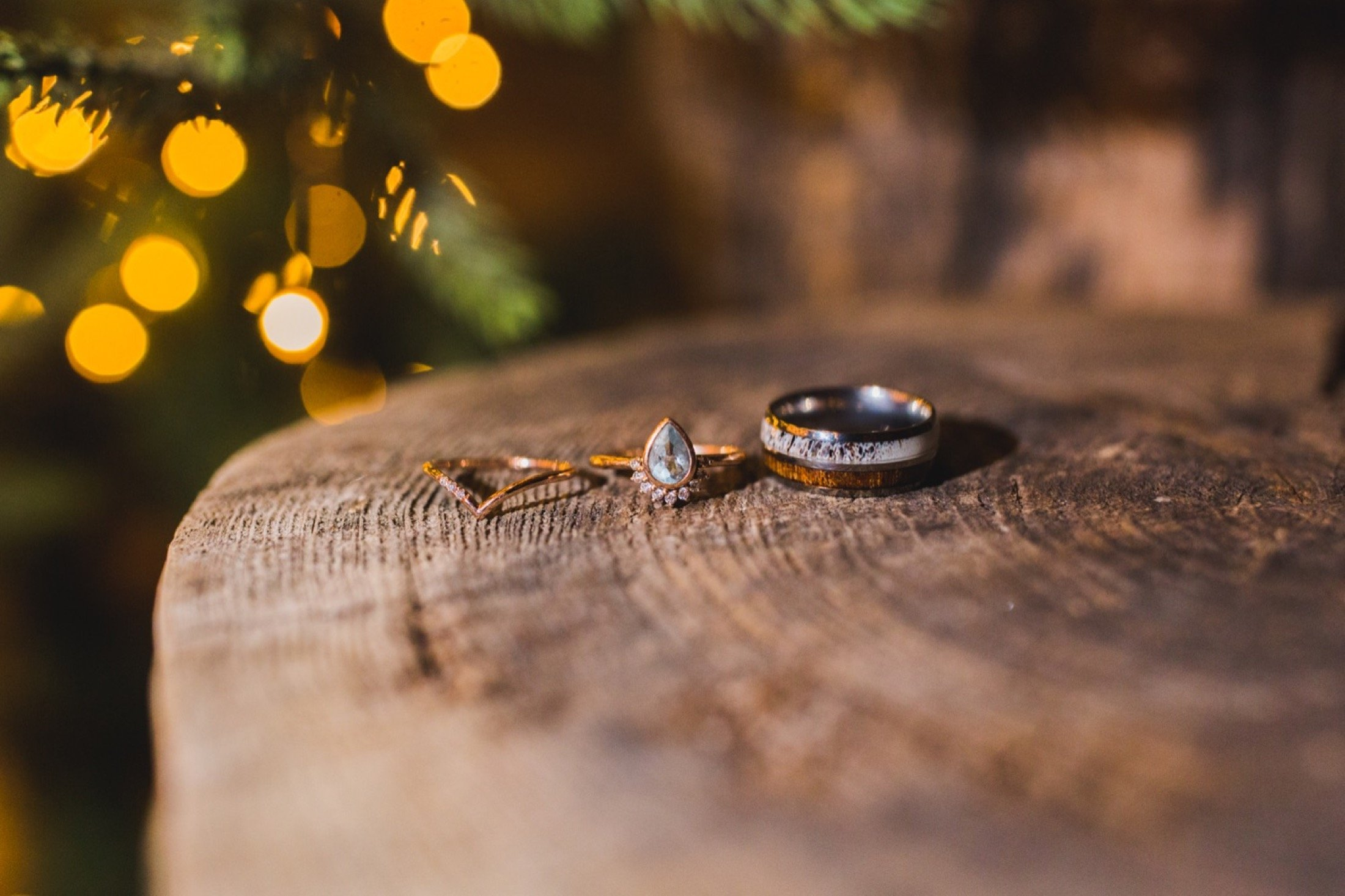 wedding rings, macro, winter