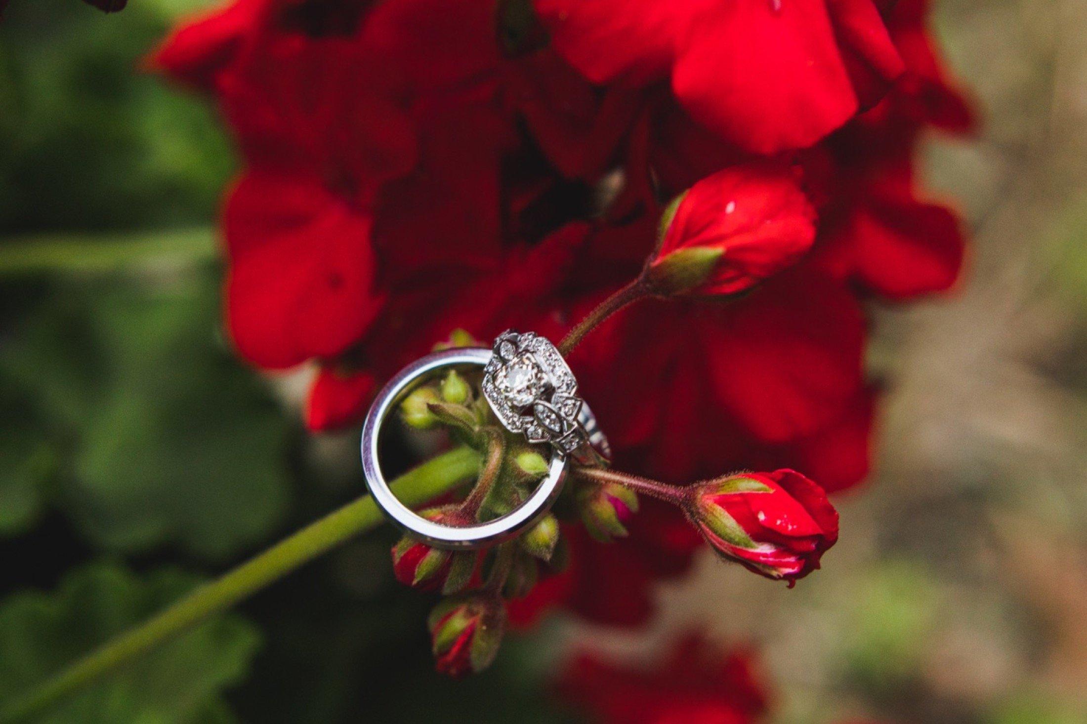 wedding rings, Philadelphia, backyard wedding
