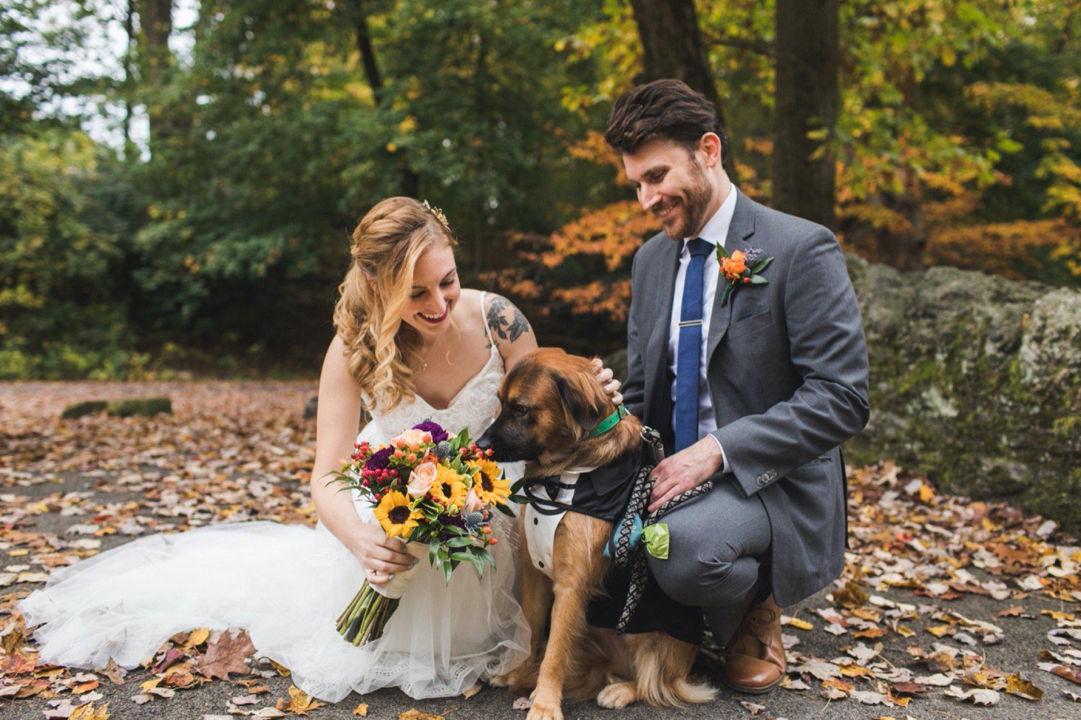 wedding portraits, dog, microwedding, Philadelphia, Curtis Arboretum