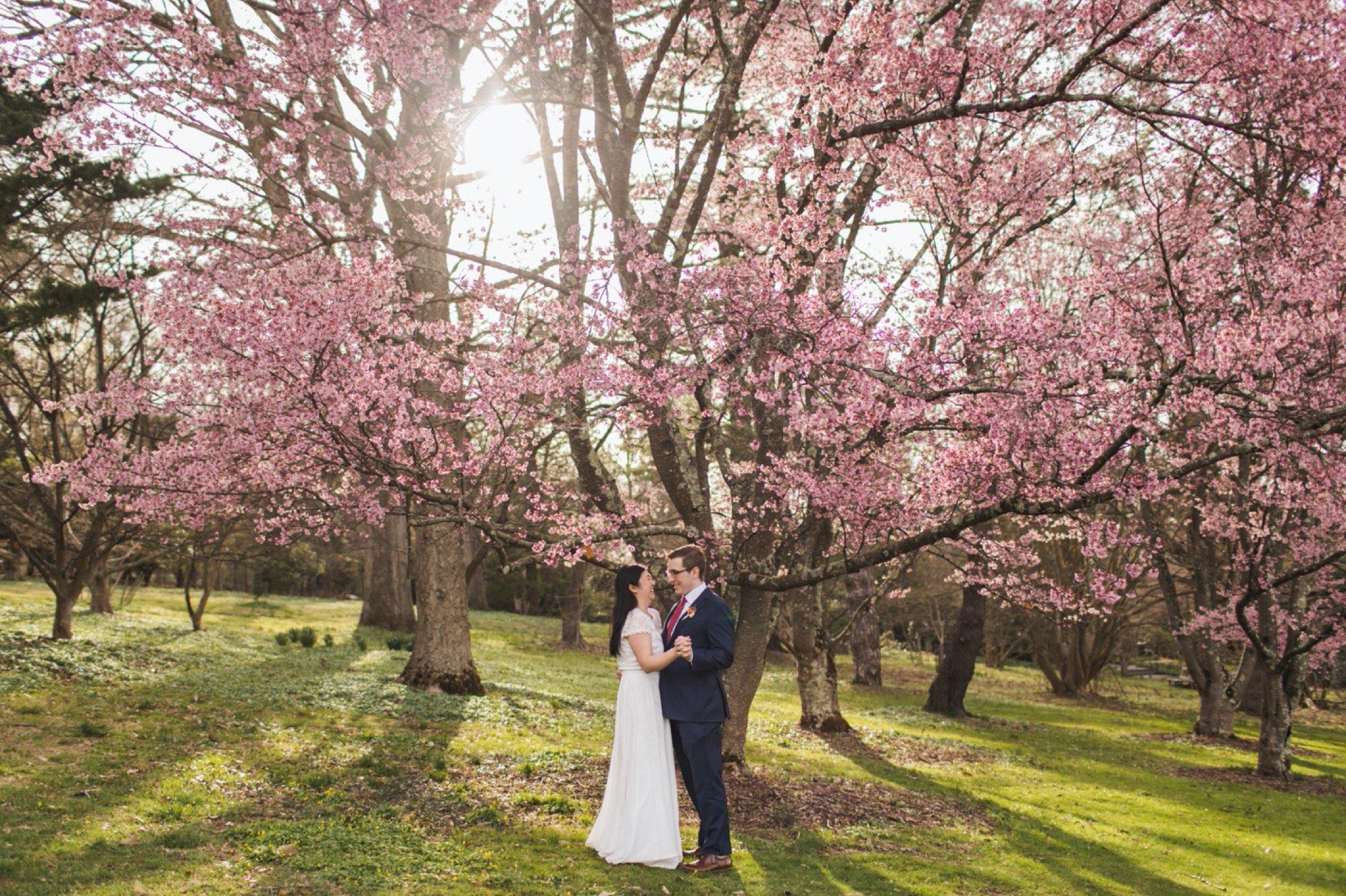 photos from a microwedding at Morris Arboretum in Philadelphia